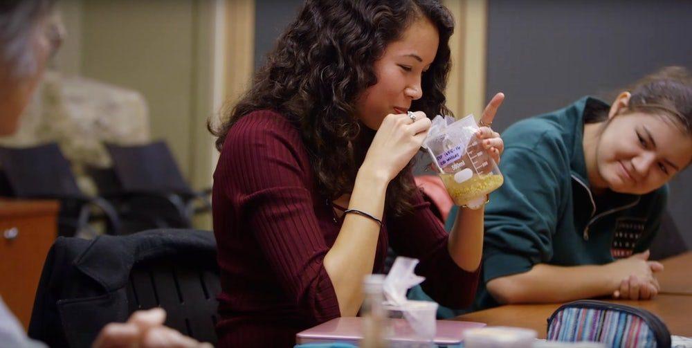 Студенты Стэнфорда попробовали 5000-летнее пиво
