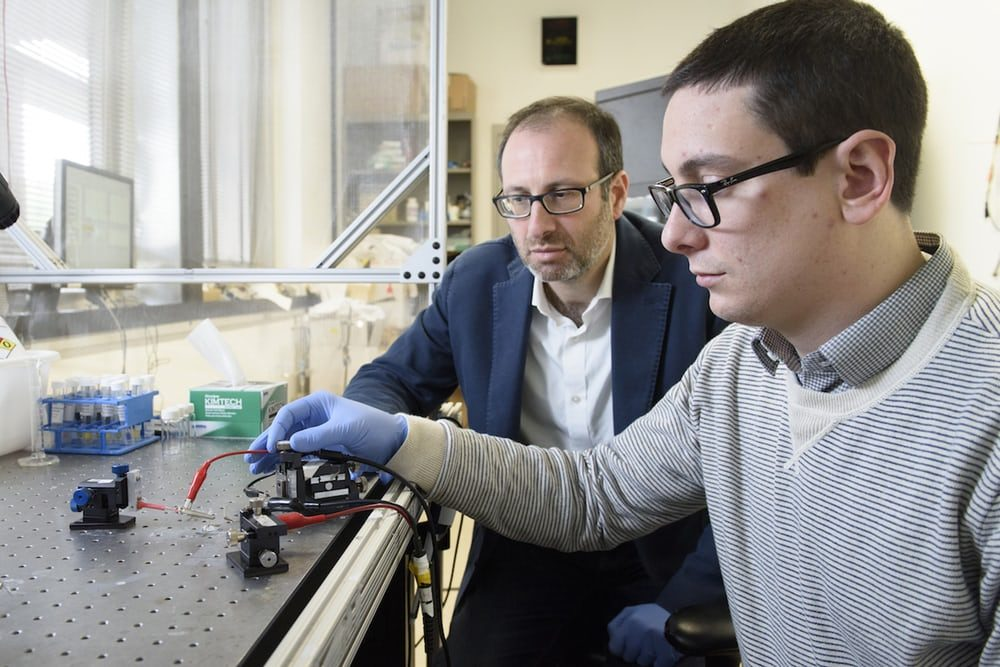 В Стэнфордском университете создали искусственный синапс