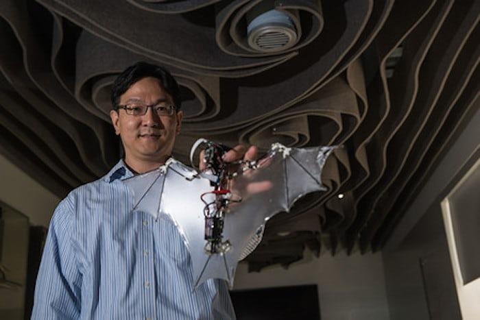Разработана первая роботизированная летучая мышь