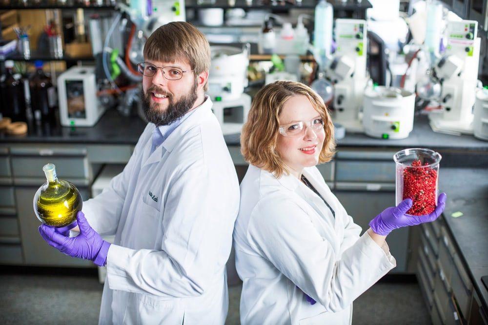 Ученые хотят побороть супербактерию ягодами