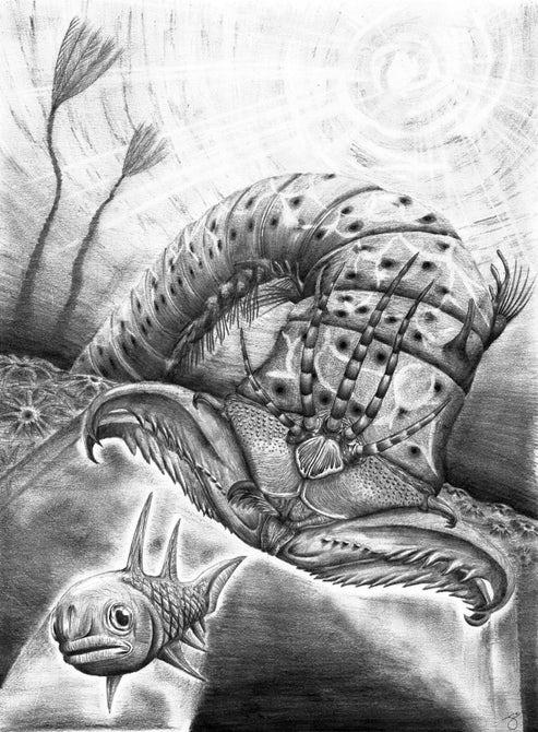 Новый вид гигантского червя назвали в честь музыканта