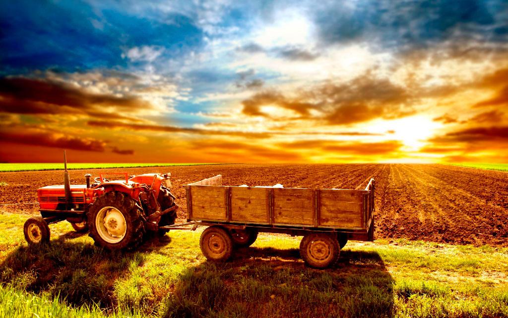 термобелья должна российский производитель сельхозяйского оборудывания для