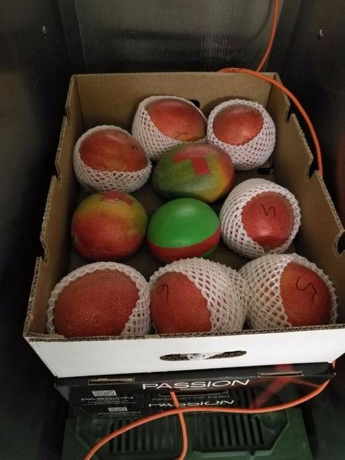 В Швейцарии создали 3D-печатные датчики для фруктов