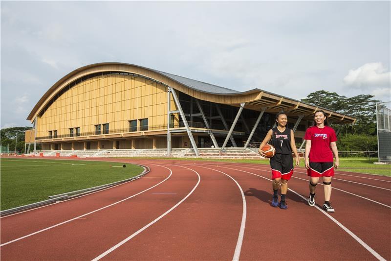 В Сингапуре построен первый стадион из дерева