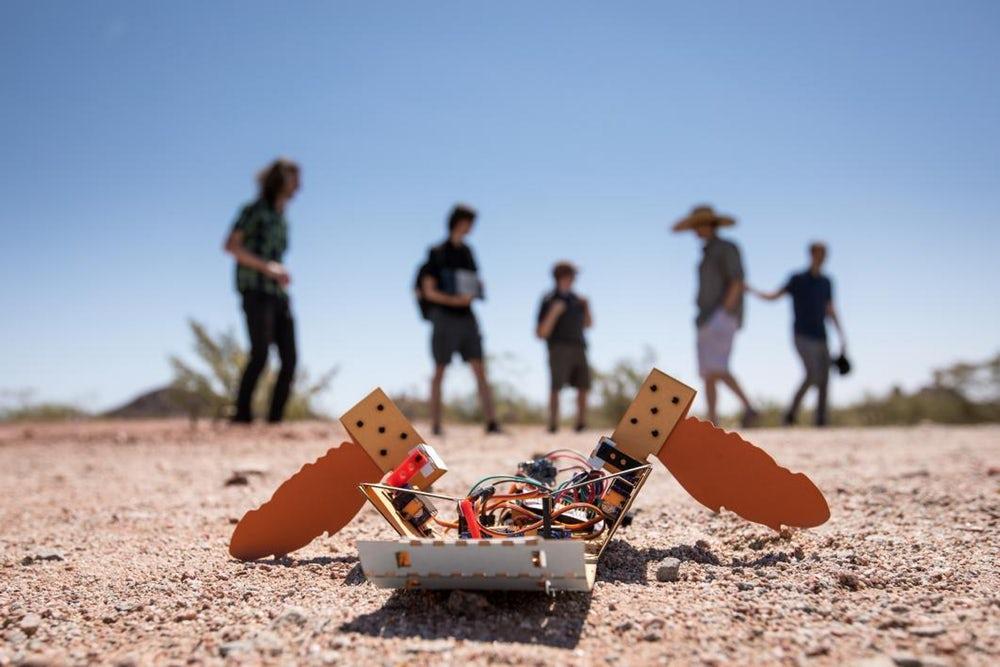 """Американские ученые создали """"пустынного"""" робота C-Turtle"""