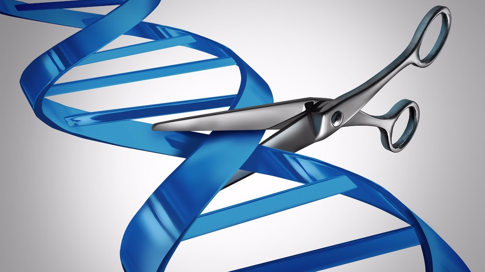 Система CRISPR-Cas9 внесла ошибки вгеном при редактировании