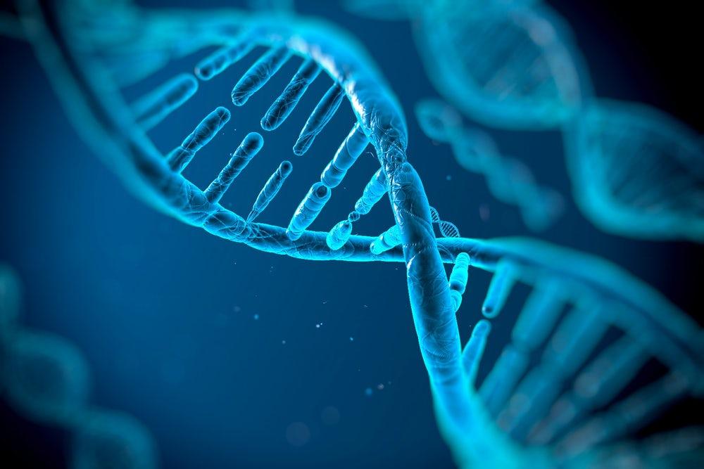 Ученые приступили к изучению побочных эффектов редактирования генома