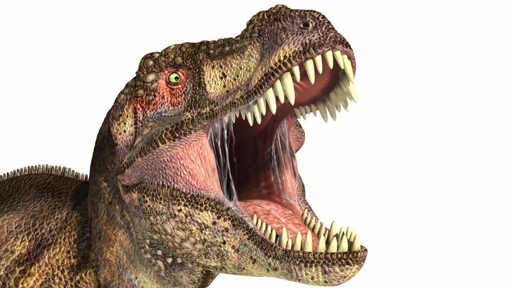 Тираннозавр обладал сильнейшими челюстями за всю историю