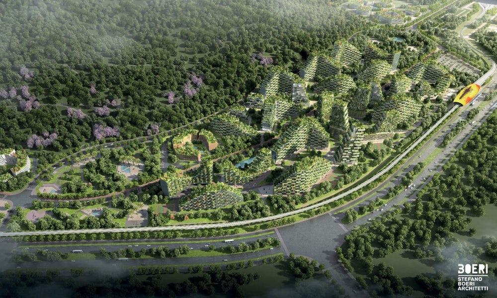 В КНР  построят 1-ый  вмире город-лес