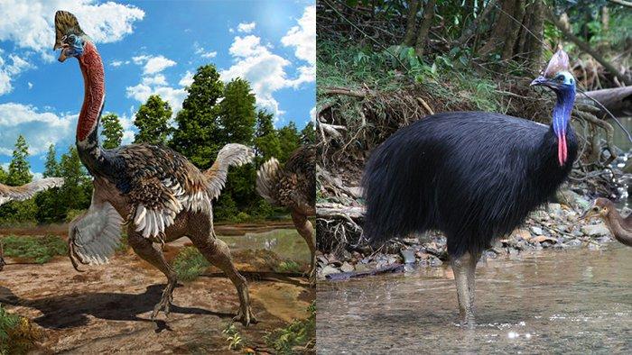 Ученые обнаружили новый вид динозавра