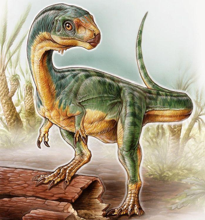"""""""Динозавр Франкенштейна"""" оказался недостающим звеном эволюции"""