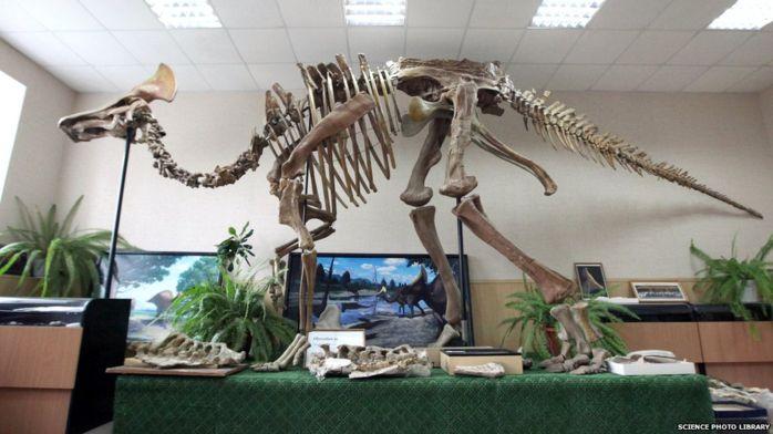 Растительноядные динозавры питались и животной пищей