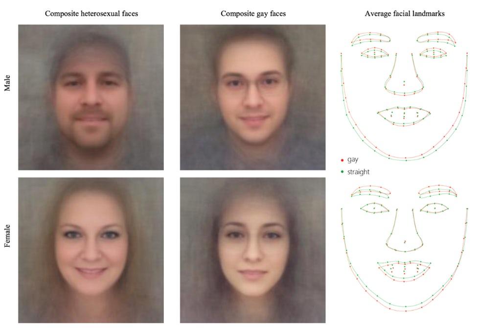 Разработана нейросеть определяющая сексуальную ориентацию по фото
