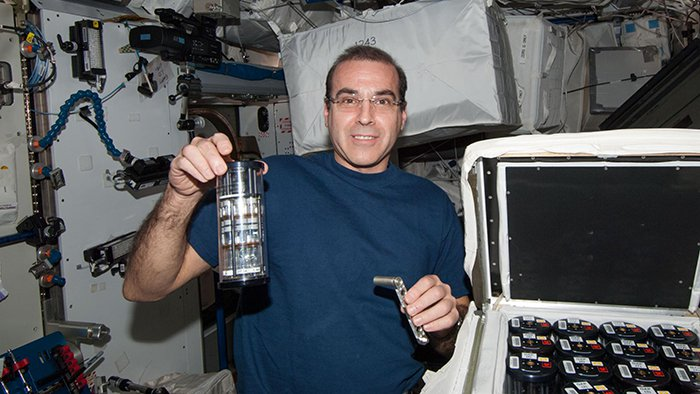 iss-bact-2