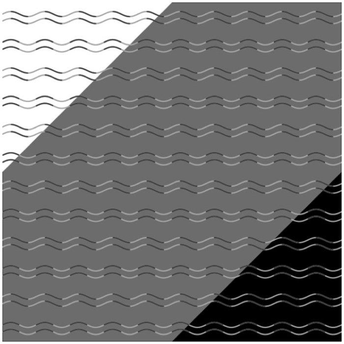 178-curvature-blindness-illusion-1