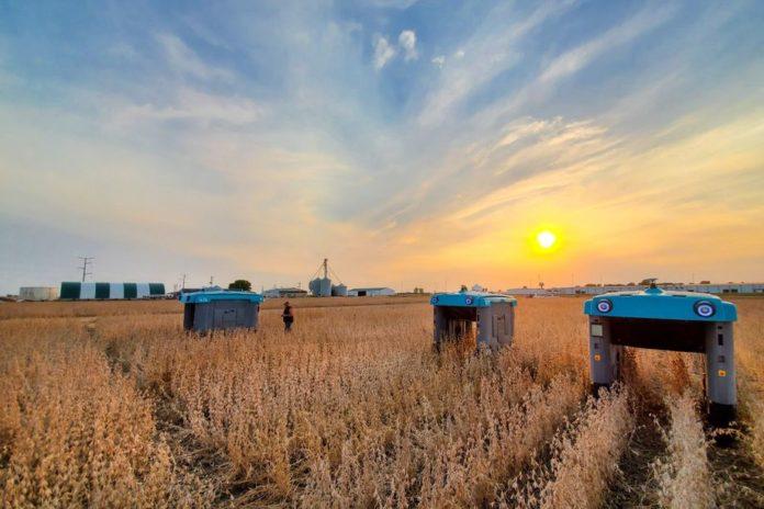 Подразделение Google разработало технологию для оптимизации выращивания сельскохозяйственных культур