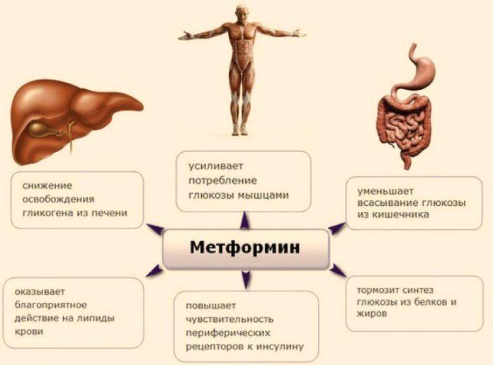 Метформин вновь отозван в США