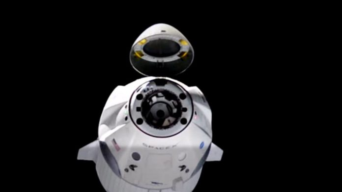 НАСА и SpaceX завершили подготовку сертификации для миссии Crew Dragon Resilience