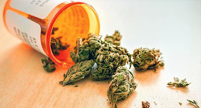 Исследование о медицинской марихуане продемонстрировало ее возможную опасность