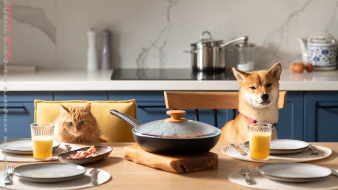 FDA отзывает корма Sportmax для собак и кошек в США