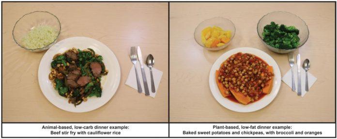 Растительная диета эффективнее низкоуглеводной в деле потери веса