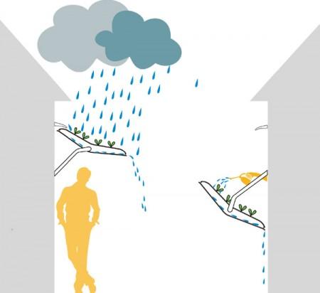 защита от дождя Хербоу